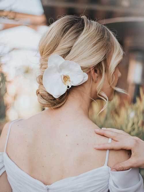 Gelin Saçı Çiçeği